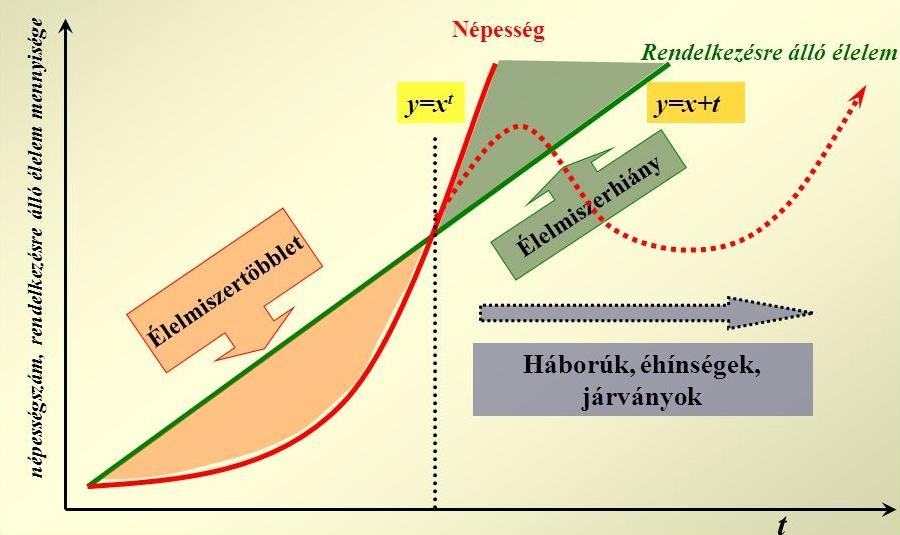 8. ábra. A Malthus-féle népesedési modell vázlata